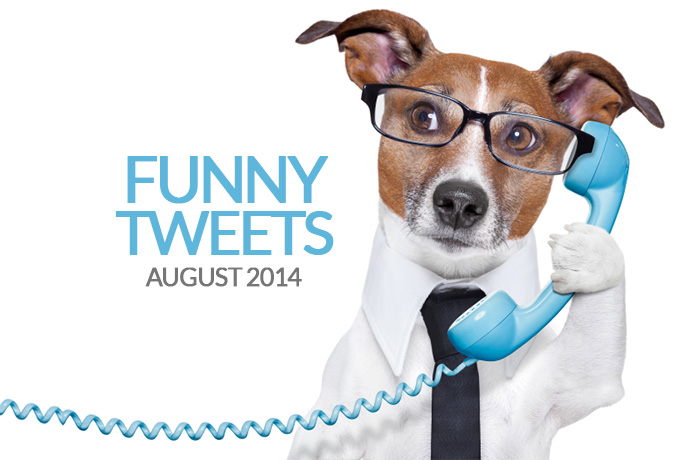 Funny Tweets Twitter Dog