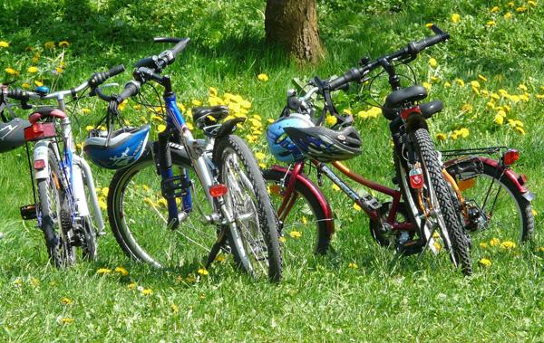 Family Biking at Keystone