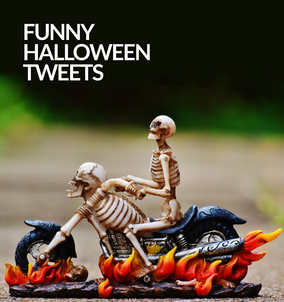 Funny Tweets From Halloween