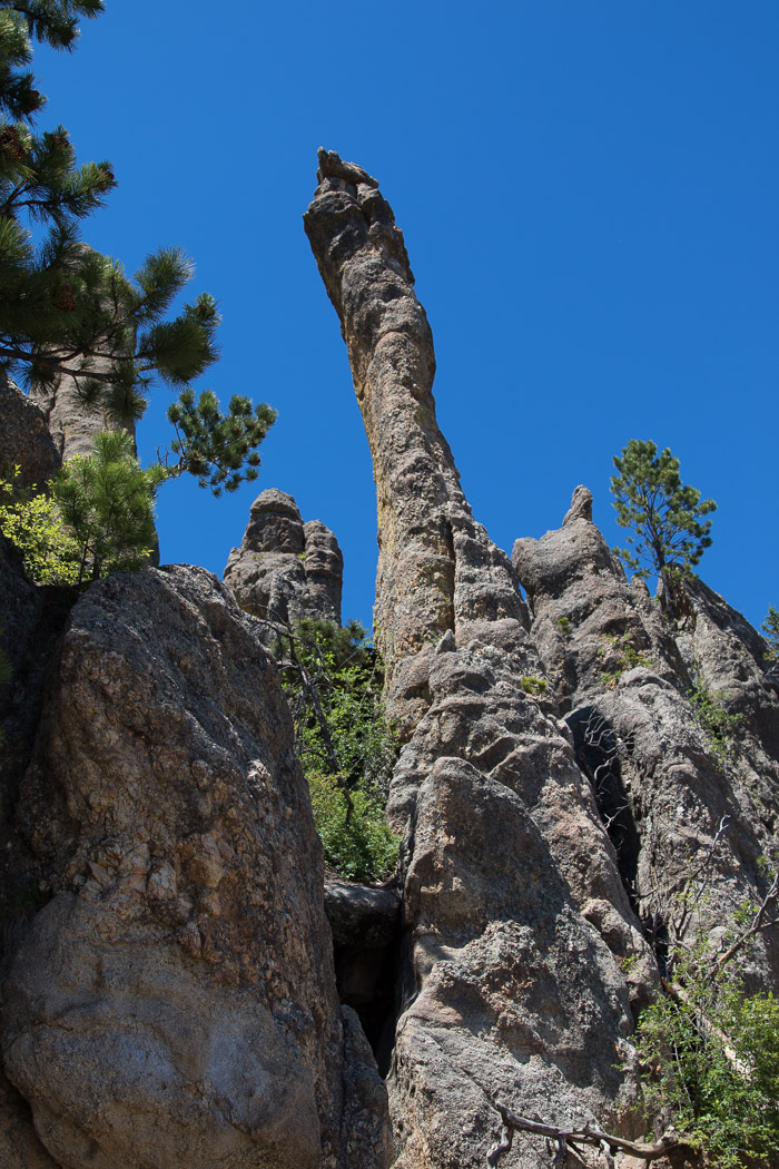 Mount-Rushmore-35