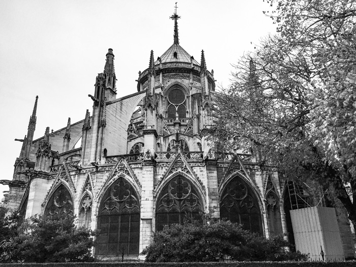 24 Hours in Paris: Notre Dame Cathedral