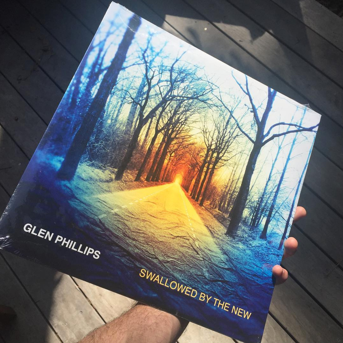 Swallowed By The New - Glen Phillips