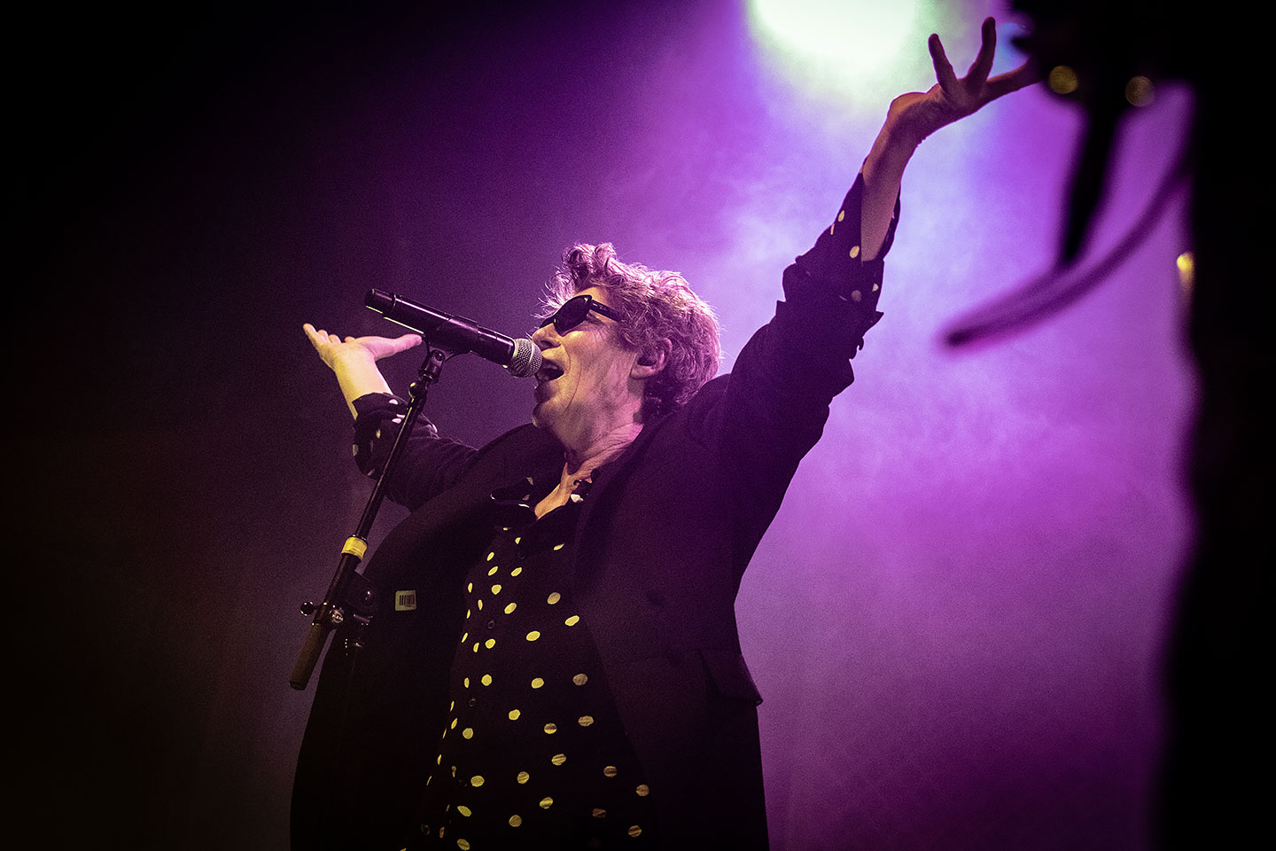 Psychedelic Furs - Denver Concert Photos